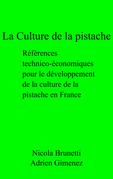 La Culture de la pistache