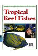 Tropical Reef Fishes: Periplus Nature Guide