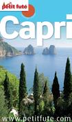 Capri (avec cartes et avis des lecteurs)