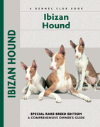 Ibizan Hound