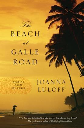 The Beach at Galle Road: Stories