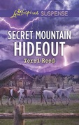 Secret Mountain Hideout (Mills & Boon Love Inspired Suspense)
