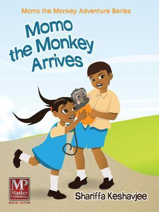 Momo the Monkey Arrives