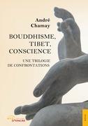 Bouddhisme, Tibet, Conscience