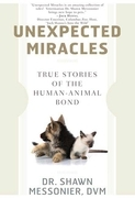 Unexpected Miracles
