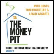 The Money Pit, Vol. 2