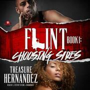 Flint, Book 1