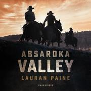 Absaroka Valley