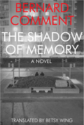 The Shadow of Memory