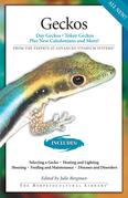 Geckos: Day Geckos, Tokay Geckos Plus New Caledonians and More!