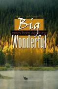 Big Wonderful