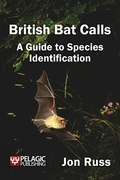 British Bat Calls: A Guide to Species Identification