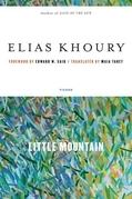Little Mountain