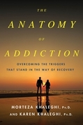 The Anatomy of Addiction