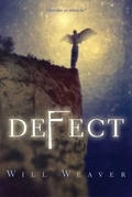 Defect