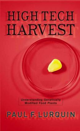 High Tech Harvest: Understanding Genetically Modified Food Plants