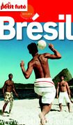 Brésil 2013-2014 (avec cartes, photos + avis des lecteurs)