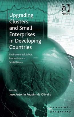 Upgrading Clusters and Small Enterprises in Developing Countries: Environmental, Labor, Innovation and Social Issues