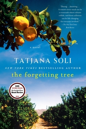 The Forgetting Tree