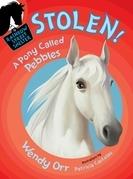 STOLEN! A Pony Called Pebbles (Rainbow Street #5)