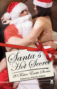 Santa's Hot Secrets: 20 erotic festive stories