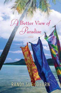 A Better View of Paradise: A Novel