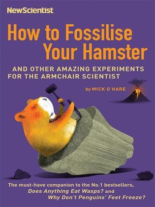 How to Fossilise Your Hamster: And Other Amazing Experiments for the Armchair Scientist