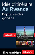 Ide d'itinraire au Rwanda : Baptme des gorilles