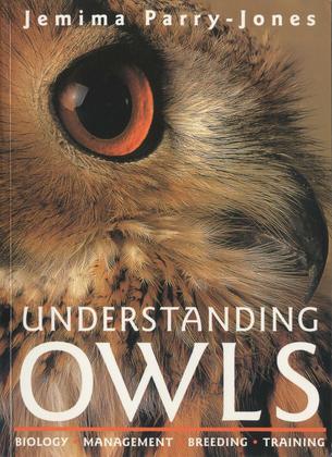 Understanding Owls