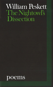 The Nightowl's Dissection