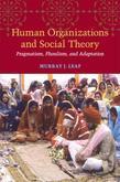 Human Organizations and Social Theory: Pragmatism, Pluralism, and Adaptation