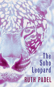 The Soho Leopard