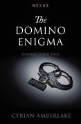 The Domino Enigma