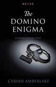 The Domino Enigma