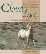 Cloud's Legacy: The Wild Stallion Returns
