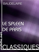 Le Spleen de paris, petits pomes en prose