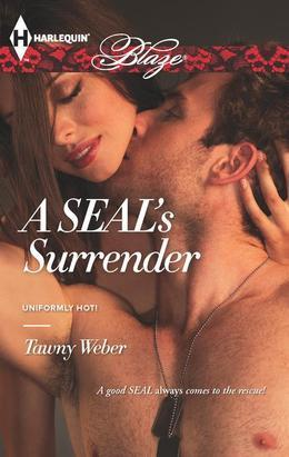 A SEAL's Surrender