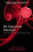 An Executive Decision: Book One in The Executive Decision Trilogy