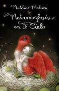Metamorfosis en el cielo