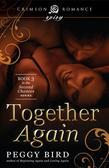 Together Again: Book 3 in the Second Chances series