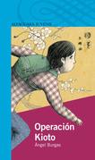 Operación Kioto
