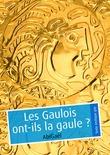 Les Gaulois ont-ils la gaule ? (pulp gay)