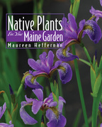 Native Plants for Your Maine Garden