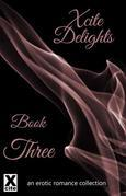 Xcite Delights - Book Three: an erotic romance collection