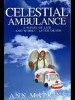 Celestial Ambulance: A Novel of Life - and Work - After Death