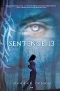 Sentence 13