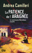 La patience de l'araigne