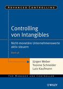 Controlling Von Intangibles: Nicht-Monetare Unternehmenswerte Aktiv Steuern