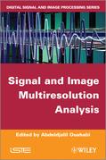 Signal and Image Multiresolution Analysis