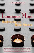 Luminous Mind: Meditation and Mind Fitness